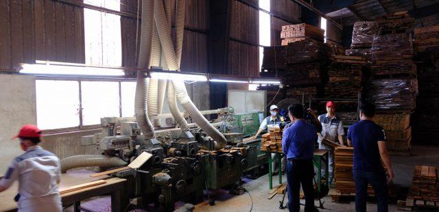 Truyền hình Nhân dân đưa tin về Nhà máy Ván sàn Vĩnh An